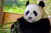 Ouwehands Tierpark Rhenen Holland